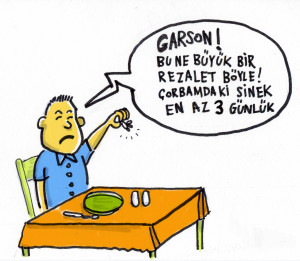 corbadaki_sinek
